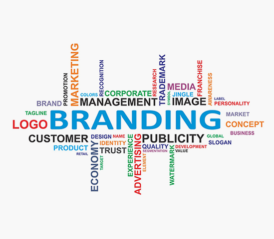 Our Endeavor Is To Provide Holistic Branding, Web & Digital Solutions